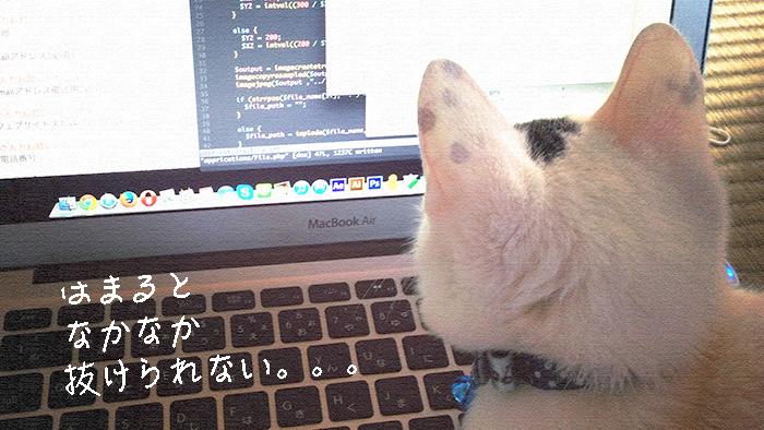 お名前ドットコム共用サーバーSDでのDB設定まとめ!