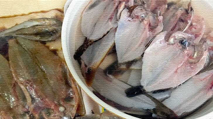釣った魚は手作り干物に!塩干し・みりん干し・ウイスキー干し