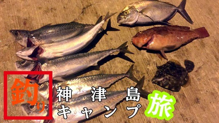 カイワリに赤ブダイ!夜はサバが好釣だぃ|神津島釣りキャンプ
