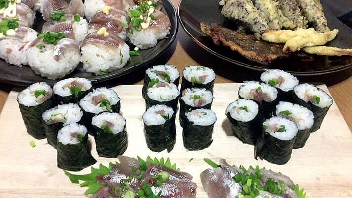 釣ったウルメイワシで手毬寿司に巻き寿司!酢締め刺身に天ぷらも!