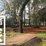 体操にカラオケ!青年公園で台湾地元民の朝に触れてみた【台北旅行】