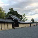 春の京都へ!関空から京都へ移動し京都御所をのんびり散歩