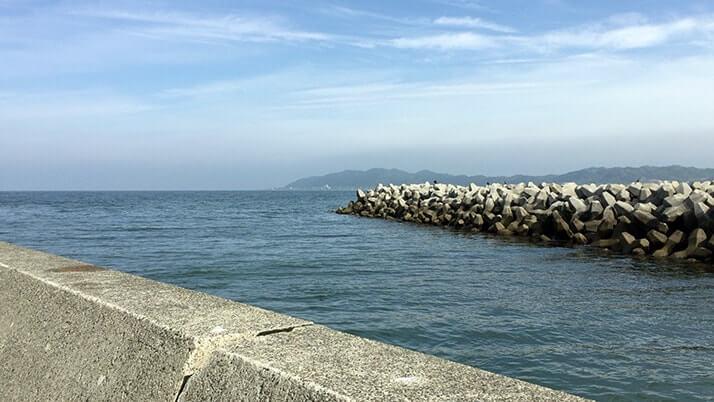 堤防釣りで70cmヒラメ!千葉館山相浜港でのサバ泳がせで大物GET
