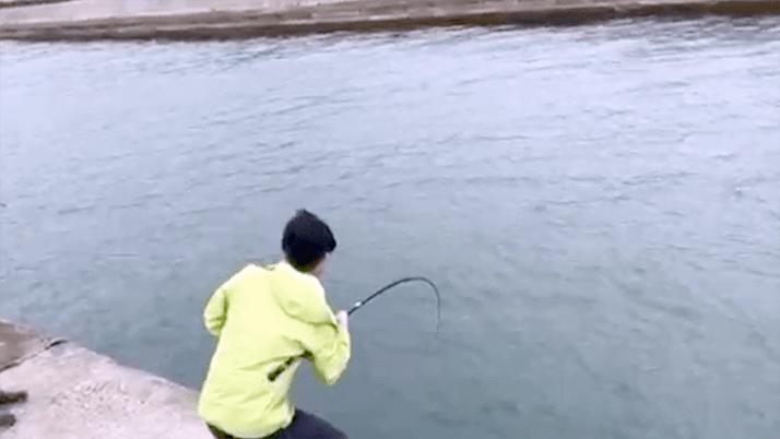 堤防釣りで70cmヒラメ!千葉館山でのサバ泳がせで大物GET