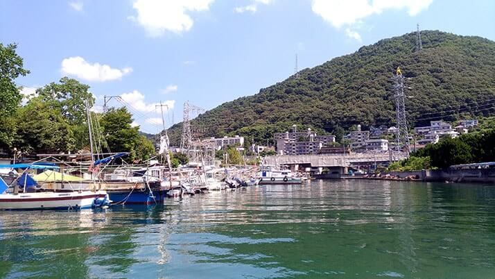 タコつぼ漁体験!広島三原の伝統的な漁を間近で見る興奮
