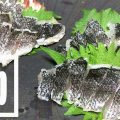 グレ(メジナ)の湯霜・焼霜造り!皮の旨味が◎な刺身【釣り飯】