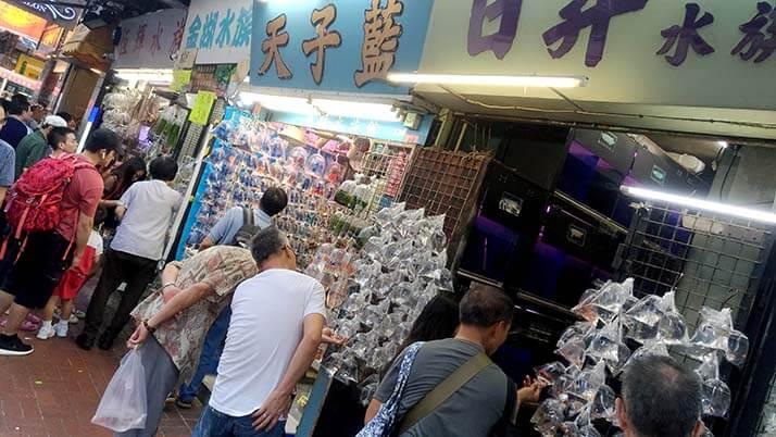 鳥に花に金魚に雑貨!香港の◯◯専門市場街が散策にオススメ!!