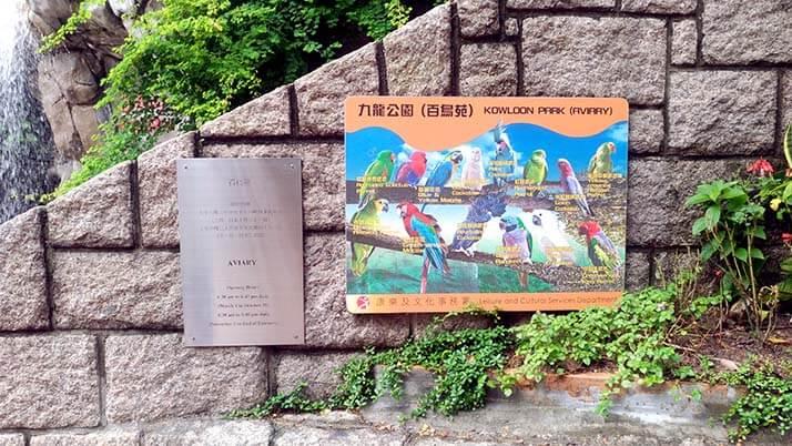 九龍公園|太極拳をする地元民が集まる憩いの場には鳥園も!