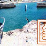 千葉外房鴨川で釣り!青年の家下の磯と江見漁港で小サバ入れ食い