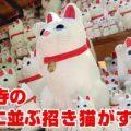 招き猫発祥の地!豪徳寺に無数に並ぶ招き猫は美人さんだらけ!!