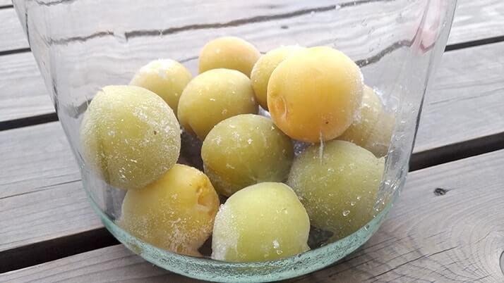 梅シロップの作り方|自家製梅ジュースで疲労回復&リフレッシュ!