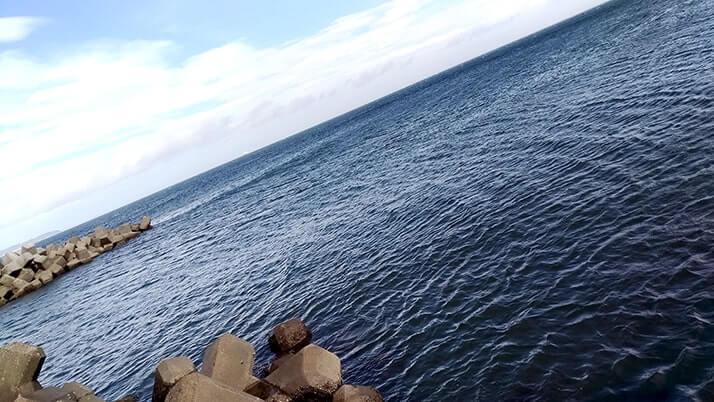 千葉内房堤防海釣り!初心に戻りベラ・石鯛・ソイ・ウミタナゴ…五目釣り