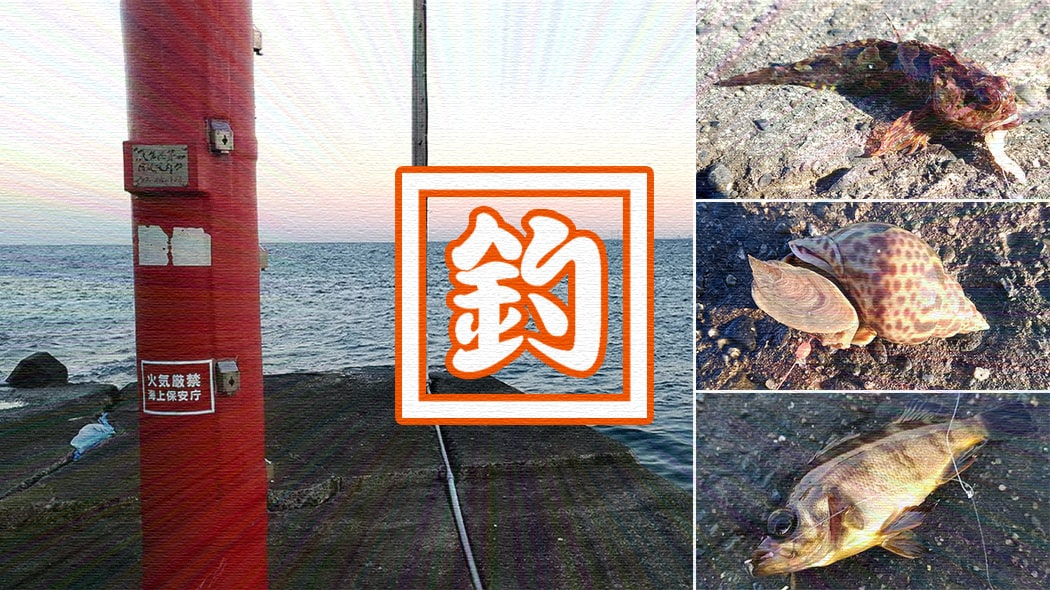 新年明けましての冬釣り!千葉内房堤防釣りも…釣れたのは貝?