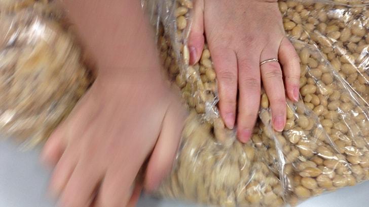 味噌作り体験 〜味噌を作ることとは良い菌を家に増やすこと〜