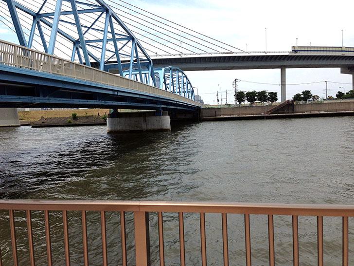 ゴミ拾い散歩 上平井橋〜本奥戸橋間の中川沿い