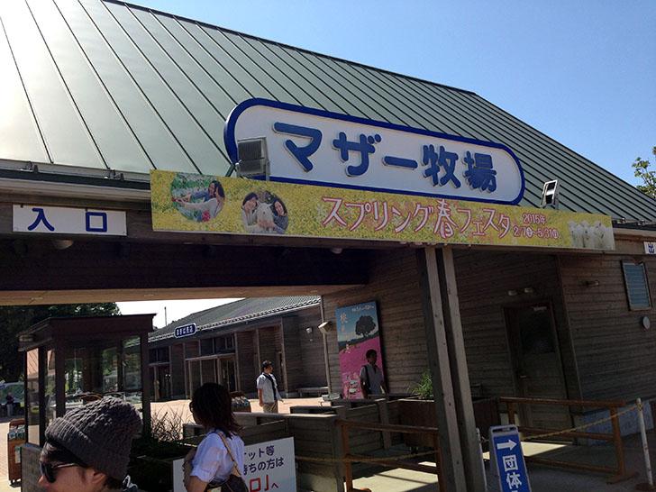 千葉マザー牧場のおすすめソフトクリームとジンギスカン!
