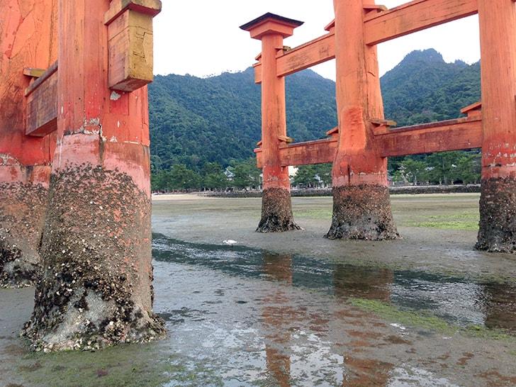 嚴島神社|広島宮島にある歴史ある神社でおみくじ…結果は平??