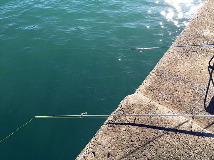 千葉内房堤防で五目釣り!釣竿を海に引き込むほどの大物が!