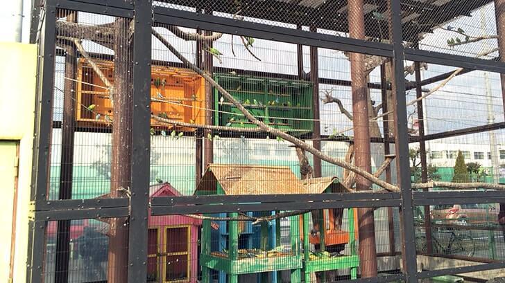 西亀有にある動物園のような公園『上千葉砂原公園』