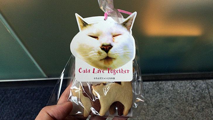 『ちよだ猫まつり2016』動物保護と寄附と我が家の猫