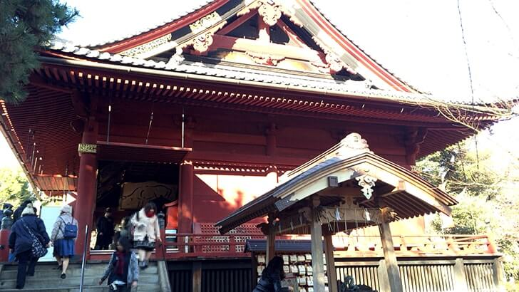 上野公園にある重要文化財 寛永寺清水観音堂の『月の松』