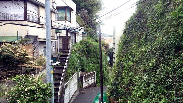 互いのブログを通じて会う 〜三笠ビル商店街裏の山を探索〜