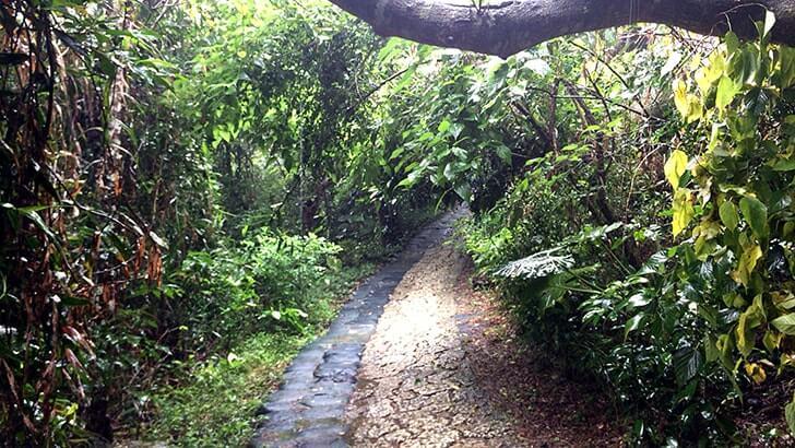 神聖な場へ…沖縄の聖地『斎場御嶽』世界遺産を訪れる【沖縄旅行】