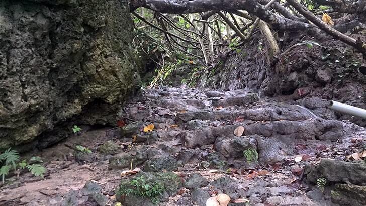垣花樋川の雰囲気が素敵!全国名水百選の湧水【沖縄旅行】