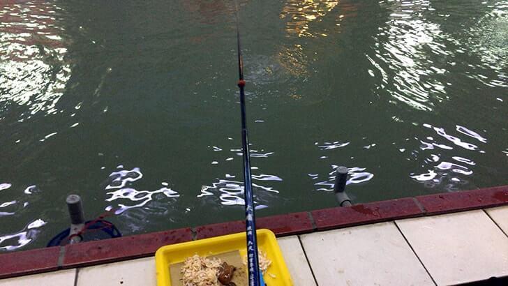 夜遊びにエビ釣り!台湾の春城釣蝦場で海老を釣って食らう!