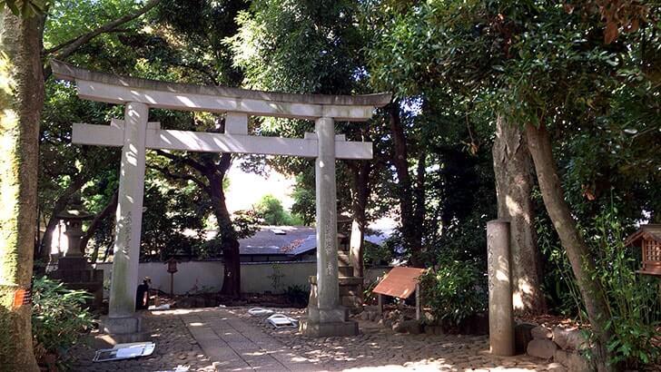 代々木八幡宮で過ごした1日 出世稲荷や緑に包まれた境内